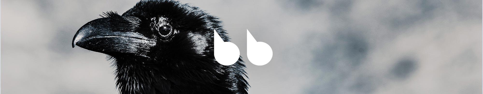 Ejercicio avanzado de listening & reading: The Raven